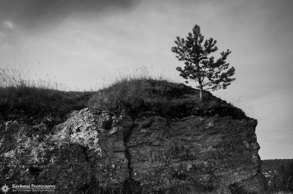 черно-белая фотография / почему стоит заниматься фотографией