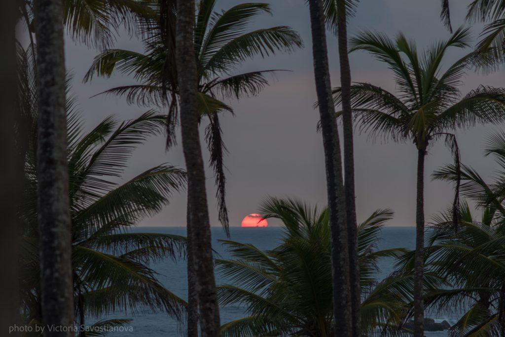 Шри-Ланка, закат фотограф: Виктория Савостьянова